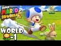 Super Mario 3D World: 2P Co-Op! Blue Blur FLOWER-1 (Nintendo Wii U HD Gameplay Walkthrough)