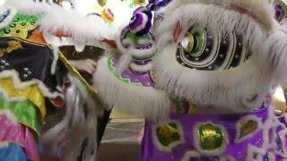 Human Mobile Stage 107, 55th Anniversary Chau Biu banquet P2, Lion Dance Kung Fu.