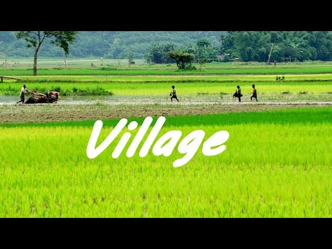 Village of Assam (Cinematic Video) | Sony a6000 | Classic VideoShots