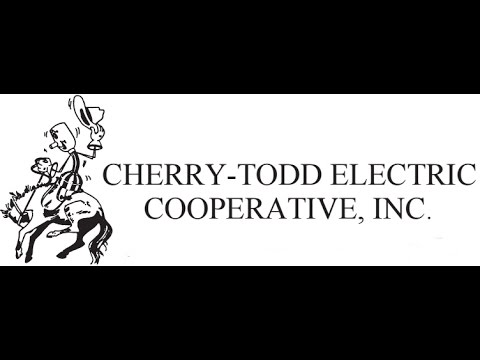 Cherry Todd Electric Candidates Forum