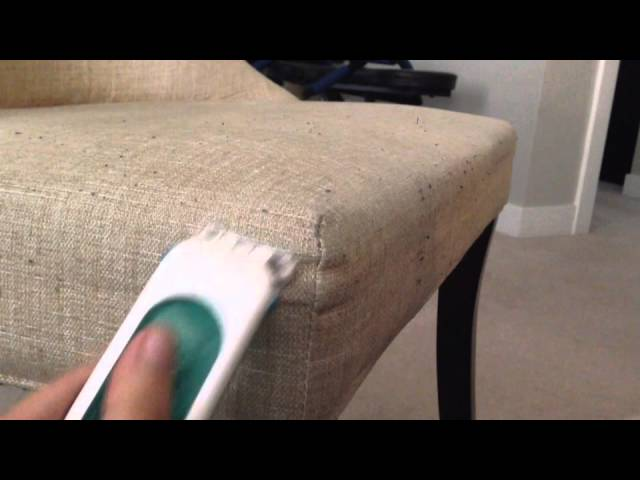 Beau Make Your Fabric Chairs Look New With This Trick   TipHero