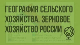 География сельского хозяйства, зерновое хозяйство России. Видеоурок по географии 9 класс