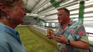 From Farm to Pint Glass: Hop Drying