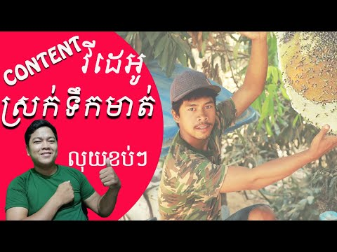 Content Video ស្រក់ទឹកមាត់ហើយបានលុយកប់ៗ   Video Content Mouth Watering   Adventure in Forest   POSKH