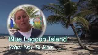 What not to Miss at Blue Lagoon Island & Dolphin Encounters