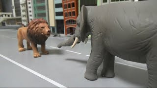 사자 vs 코끼리 동물 배틀 lion vs elephant animal battle