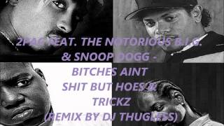 2Pac feat  The Notorious Big & Snoop Dogg - Bitches Aint Shit remix 2014 By Dj Thugless