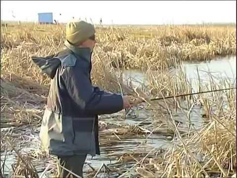 видео мастер класс ловля щуки весной на