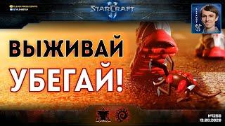БЕГСТВО БЕЗ ОГЛЯДКИ: Великое переселение зергов на Golden Wall - Bly vs uThermal в StarCraft II