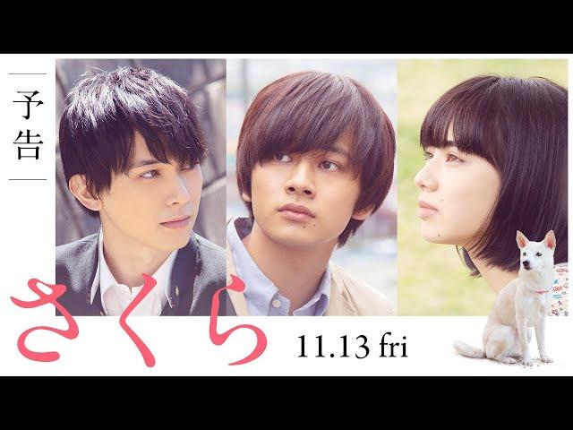 映画『さくら』予告(60秒)2020年11月13日(金)全国ロードショー
