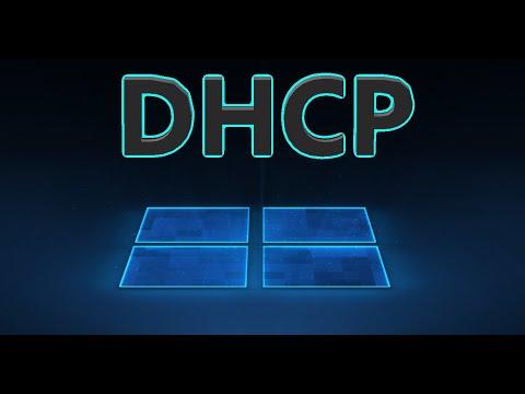 DHCP не включен на сетевом адаптере