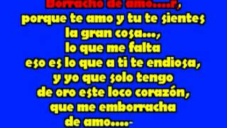 Banda La Trakalosa Borracho De Amor karaoke mpeg1video