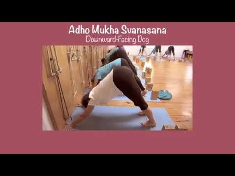 Adho Mukha Svanasana  with Lois Steinberg, Certified Iyengar Yoga Teacher Advanced 2