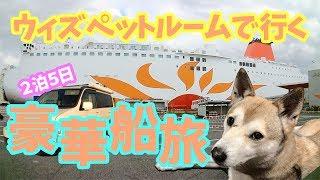 【わんこと女子の船旅】ウィズペットルームで快適に過ごす♪さんふらわあの旅 4K〜Japanese boat trip 「sunflower」to go with dog〜 thumbnail