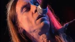Iggy Pop 'Louie Louie' - new lyrics, breaks strings!