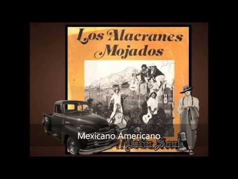 Los Alacranes Mexicano Americano