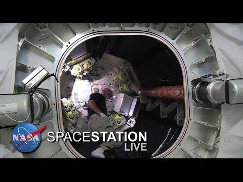 Space Station Live : Astronaut Jeff Williams Enters BEAM Expandable Module