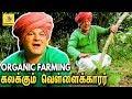 தமிழன் பாரம்பரியத்தை  மீட்கும் வெள்ளைக்காரர் : Krishna McKenzie's Organic Farming | Pondicherry