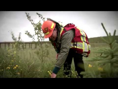 Advancing reclamation - Sandhill Fen Research Watershed