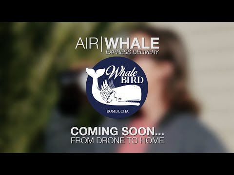 Whalebird Kombucha: Air   Whale - Drone to Home Express Delivery