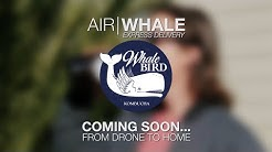 Whalebird Kombucha: Air | Whale - Drone to Home Express Delivery