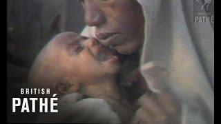 Ethiopian Famine (1984)