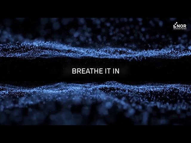 Neuroticfish - Invisible (Official Lyrics Video)