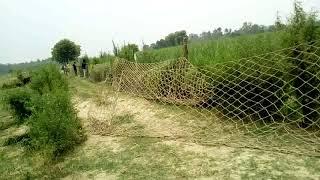किसान खेतो मे जाने से डरते थे शिकारी से पकडवाये जगली सुअर वच्चो पर हमला करते थे