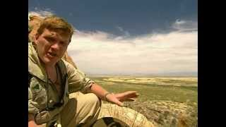*RAY MEARS* EXTREME SURVIVAL - DESERT