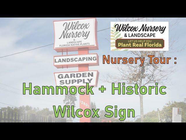 Nursery Tour- Hammock Area and Historic Wilcox Sign