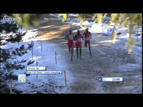2014 European Cross Country Championships, senior men race