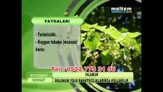 ıhlamur nedir, ıhlamur faydaları, kibarlı bitkisel ürünler, 0532 775 31 56