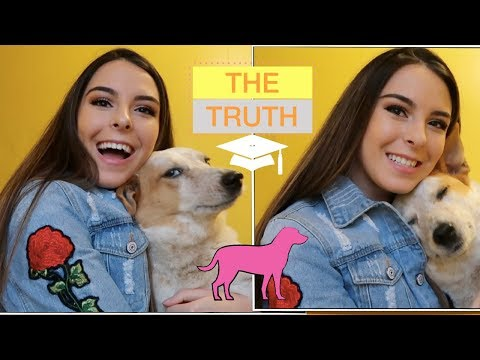 THE TRUTH ABOUT HAVING A DOG IN COLLEGE | Meet my dog Kida