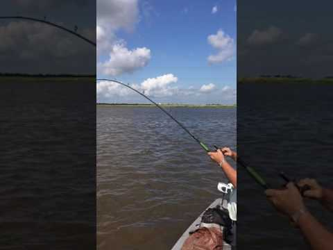 Gar Fishing Gulf States canal Bridge City 1 July 4, 2017