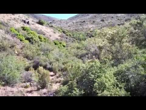 Weaver Mountains Arizona Gold Claim Testing Part 3 - Golden Dreams