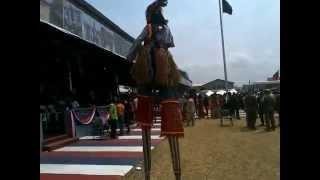 Liberian Devil