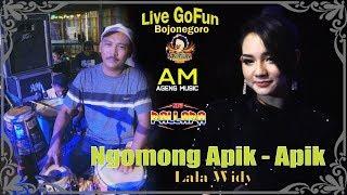Ngomong Apik-Apik - Lala Widy {Live New Pallapa GoFun - Bojonegoro}