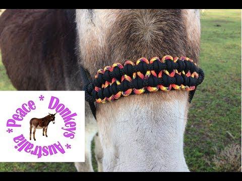 Wide paracord noseband for rope horse halter - KBK bar