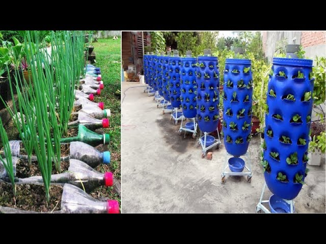90 Beautiful Garden ideas Using Old Plastic Bottles - DIY Garden Ideas