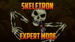 Terraria - Skeletron Expert Mode Yoyo Guide