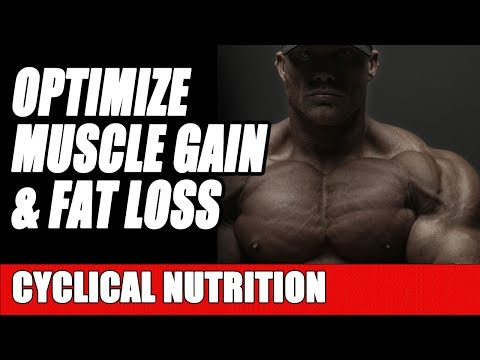 How to Optimize Nutrition & Calories for Muscle Building and Fat Loss