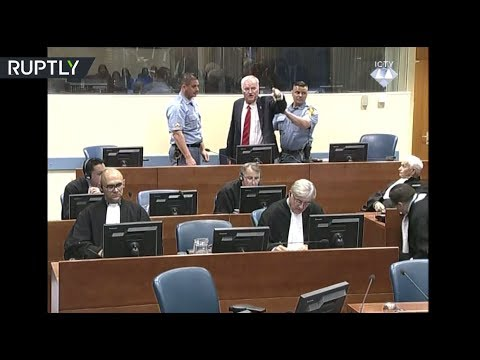 RAW: Former general Mladic removed from courtroom after outburst against judges