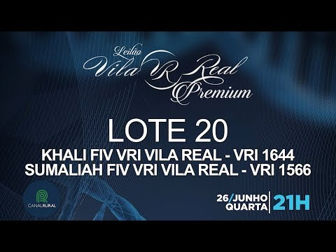 LOTE 20 (VRI 1644/VRI 1566)
