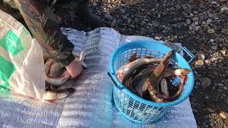 рыбалка река Иртыш 2017г