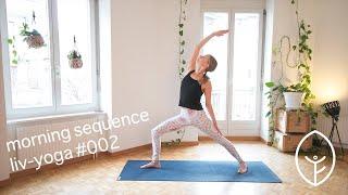 morgensequenz stabilität & öffnung - liv-yoga - video #002