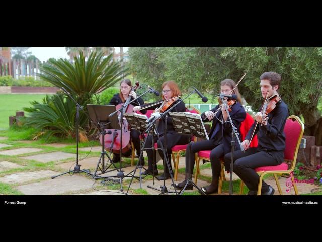 Forrest Gump Cuarteto de cuerda Boda Finca Buenavista Murcia