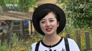 《快乐体验》 20190926 穿越三国之旅|CCTV少儿