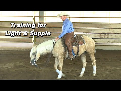 Training a Horse to be Light & Supple