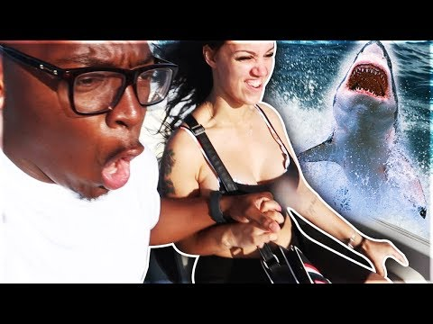 WE ALMOST GOT ATTACKED BY A SHARK **CRAZY REACTION**