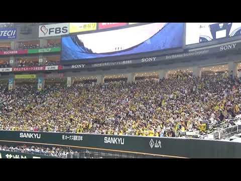 福岡でも大迫力!! 2019.6.12 阪神タイガース チャンス襲来 @ヤフオクドーム